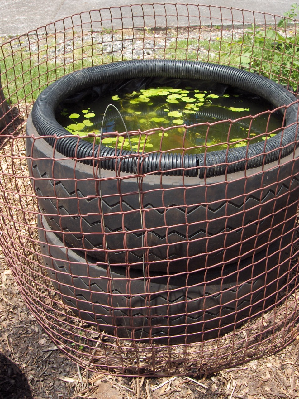 Fish pond from tractor or car tires for Portable fish pond